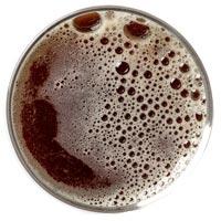 https://littlethistlebeer.com/wp-content/uploads/2018/04/beer-1.jpg
